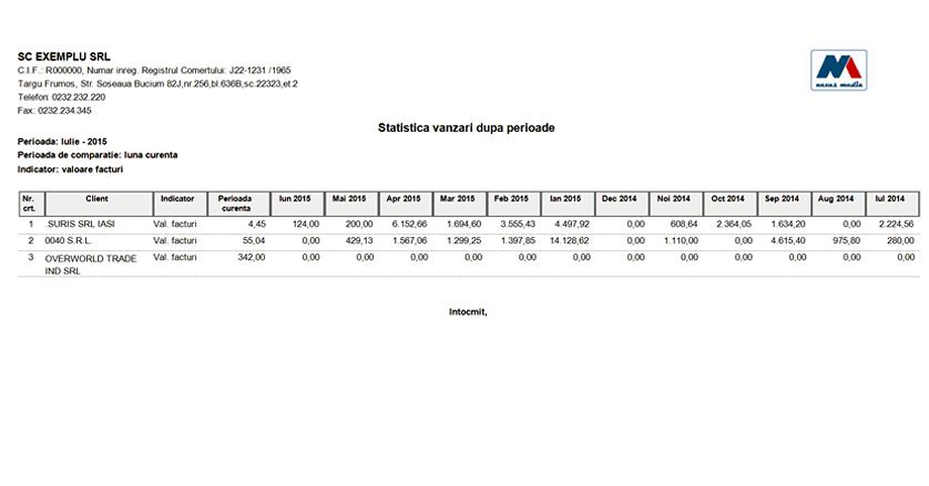 Statistica vanzari dupa perioade Raport