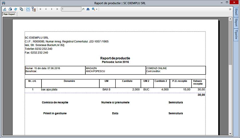 Unitate si cantitate suplimentara raport productie 02
