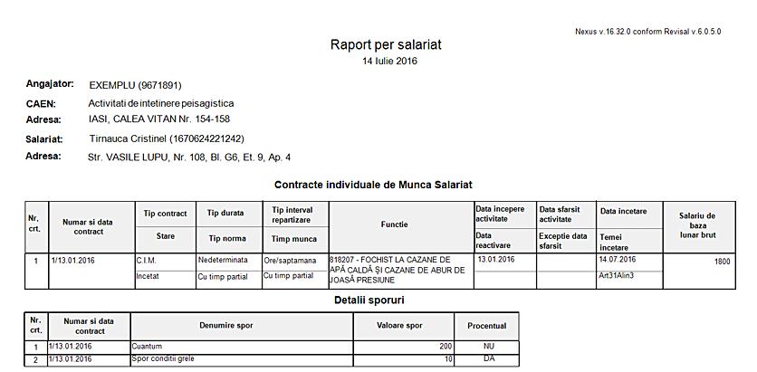 raport per salariat