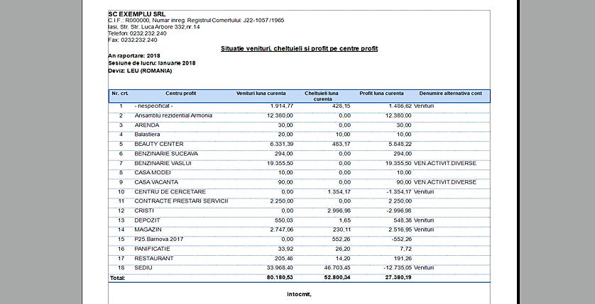 2raport1 analiza centru profit