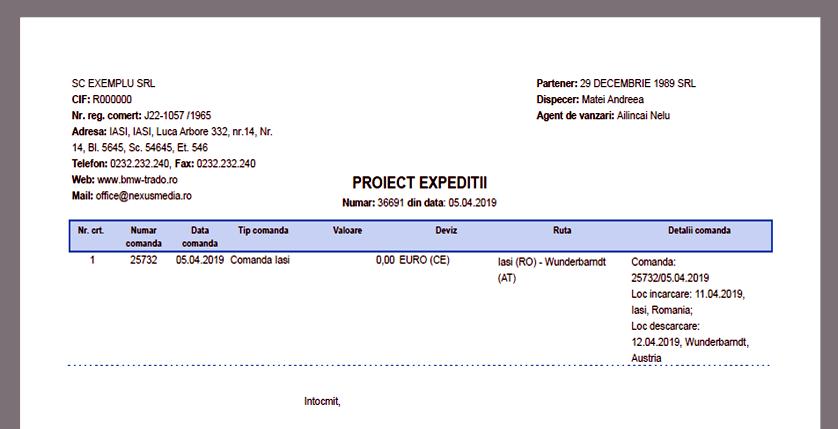 proiecte raport formular