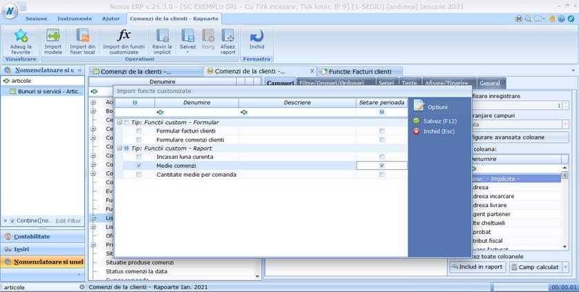 Creare rapoarte din functii customizate 04