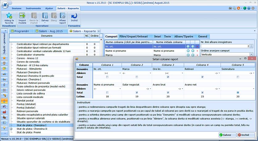 Procent dimensiune coloane rapoarte configurare avansata 02