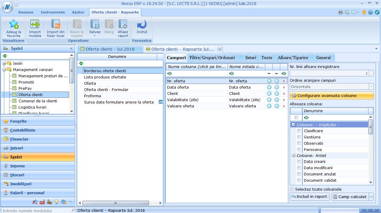 Oferte clienti - Configurare raport