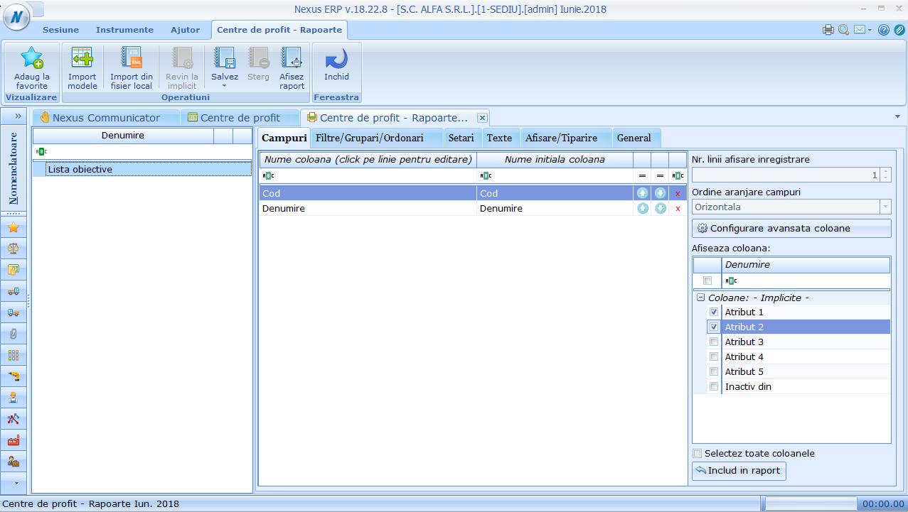 Configurare raport