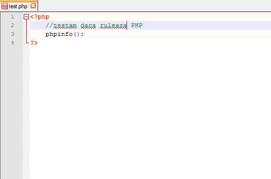 Rulare program php