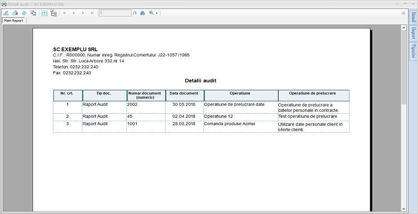 Raport: Detalii audit
